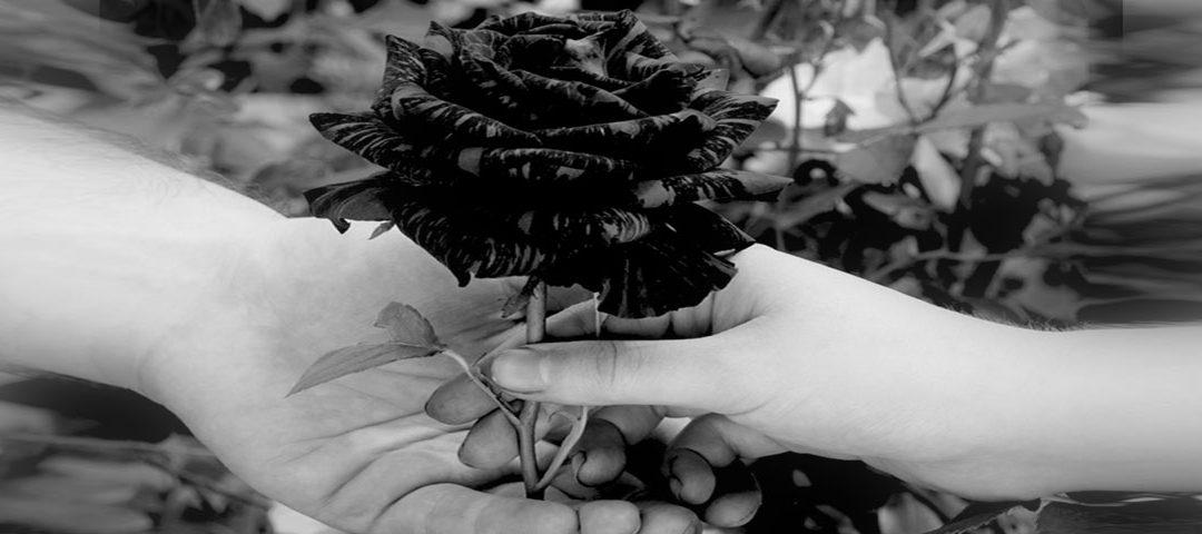 Hände sprechen Bände Teil 3 …..die Jahre ziehen ins Land